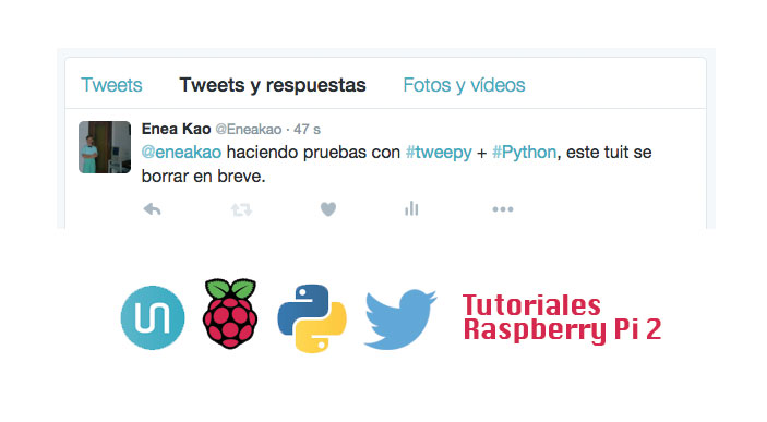 Envio tweet Raspberry Pi